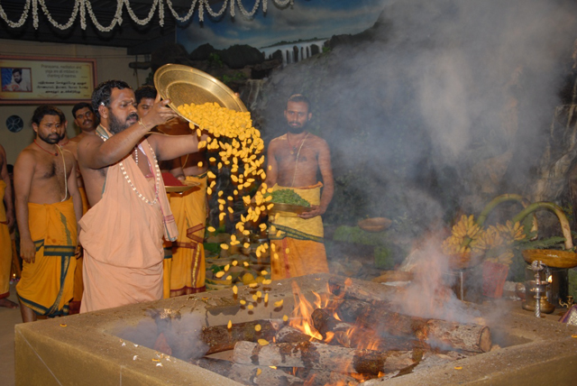 Beloved Amma adds an offering of turmeric into the fire
