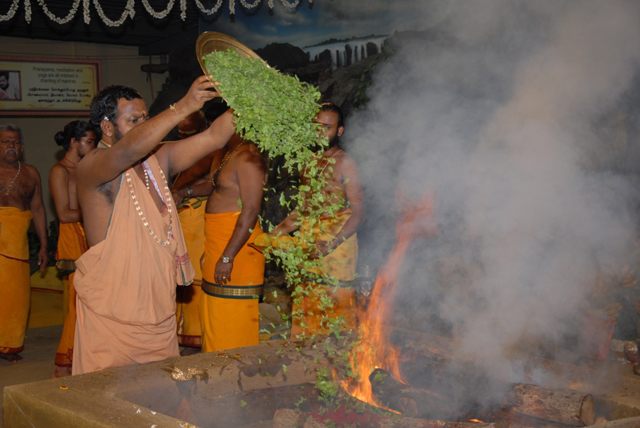 Beloved Amma adds an offering of Tulsi leaves into the fire