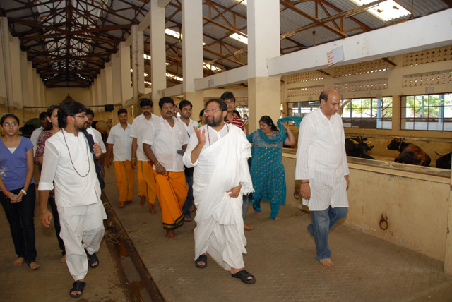 Guruji gets a tour of the Ghoshala