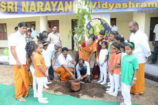 Tree planting ceremony to mark this day